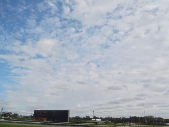 マイルチャンピオンシップ2016【過去の結果データからレース映像傾向分析】