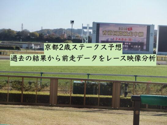 京都2歳ステークス予想。過去の結果から前走データをレース映像分析