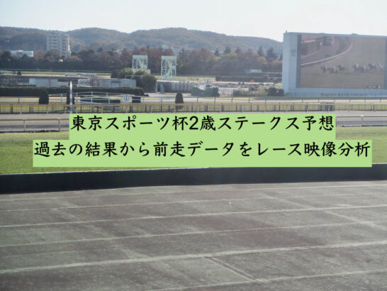 東京スポーツ杯2歳ステークス予想。過去の結果から前走データをレース映像分析