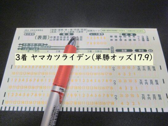 3着 ヤマカツライデン(単勝オッズ17.9)