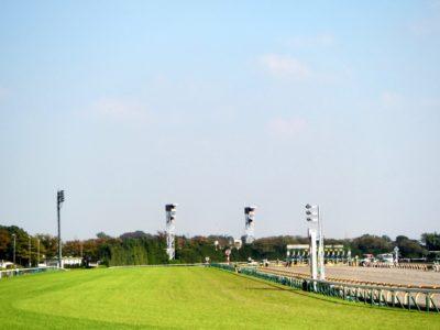 小倉大賞典2020競馬予想に。過去の結果から1〜3着馬の前走データをレース映像分析【傾向・追い切り・オッズ】