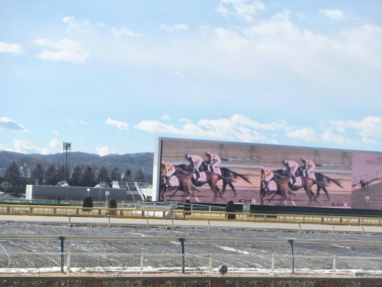 過去 京都 牝馬 ステークス