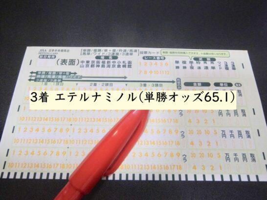 3着 エテルナミノル(単勝オッズ65.1)