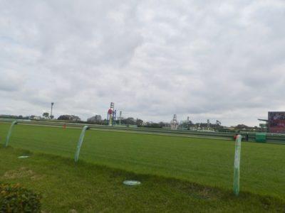 弥生賞2020競馬予想に。過去の結果から1〜3着馬の前走データをレース映像分析【傾向・追い切り・オッズ】