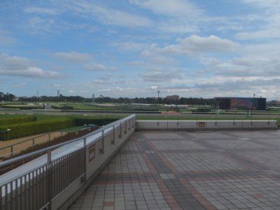 東海ステークス2020競馬予想に。過去の結果から1〜3着馬の前走データをレース映像分析【傾向・追い切り・オッズ】