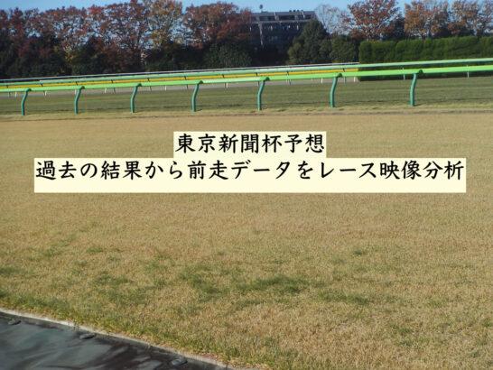 東京新聞杯予想。過去の結果から前走データをレース映像分析