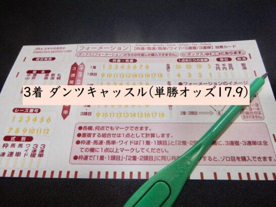 3着 ダンツキャッスル(単勝オッズ17.9)