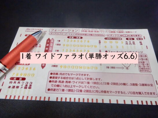 1着 ワイドファラオ(単勝オッズ6.6)