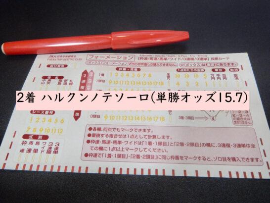 2着 ハルクンノテソーロ(単勝オッズ15.7)