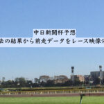 中日新聞杯予想。過去の結果から前走データをレース映像分析