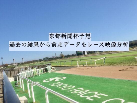 京都新聞杯予想。過去の結果から前走データをレース映像分析