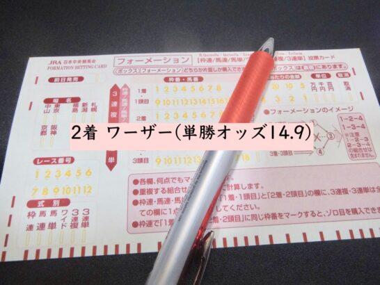 2着 ワーザー(単勝オッズ14.9)