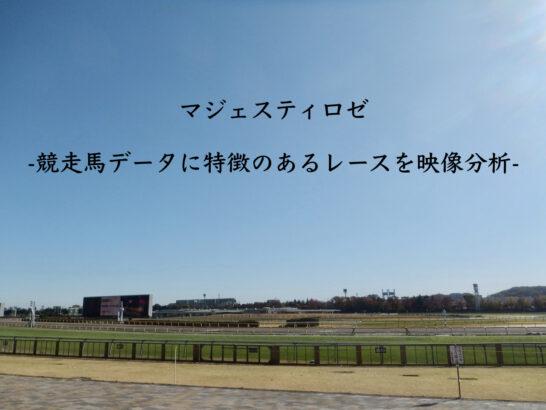 マジェスティロゼ-競走馬データに特徴のあるレースを映像分析-
