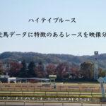 ハイテイブルース-競走馬データに特徴のあるレースを映像分析-